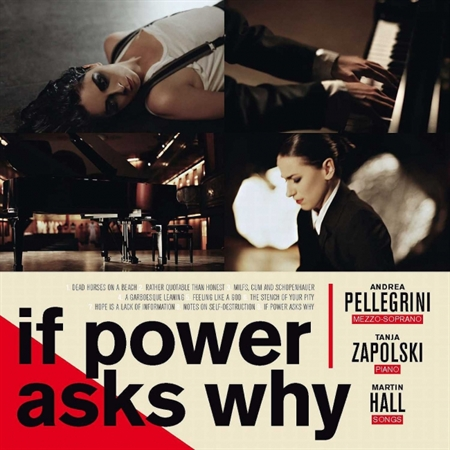 Martin Hall/Andrea Pellegrini/Tanja Zapolski - If Power Asks Why (CD)